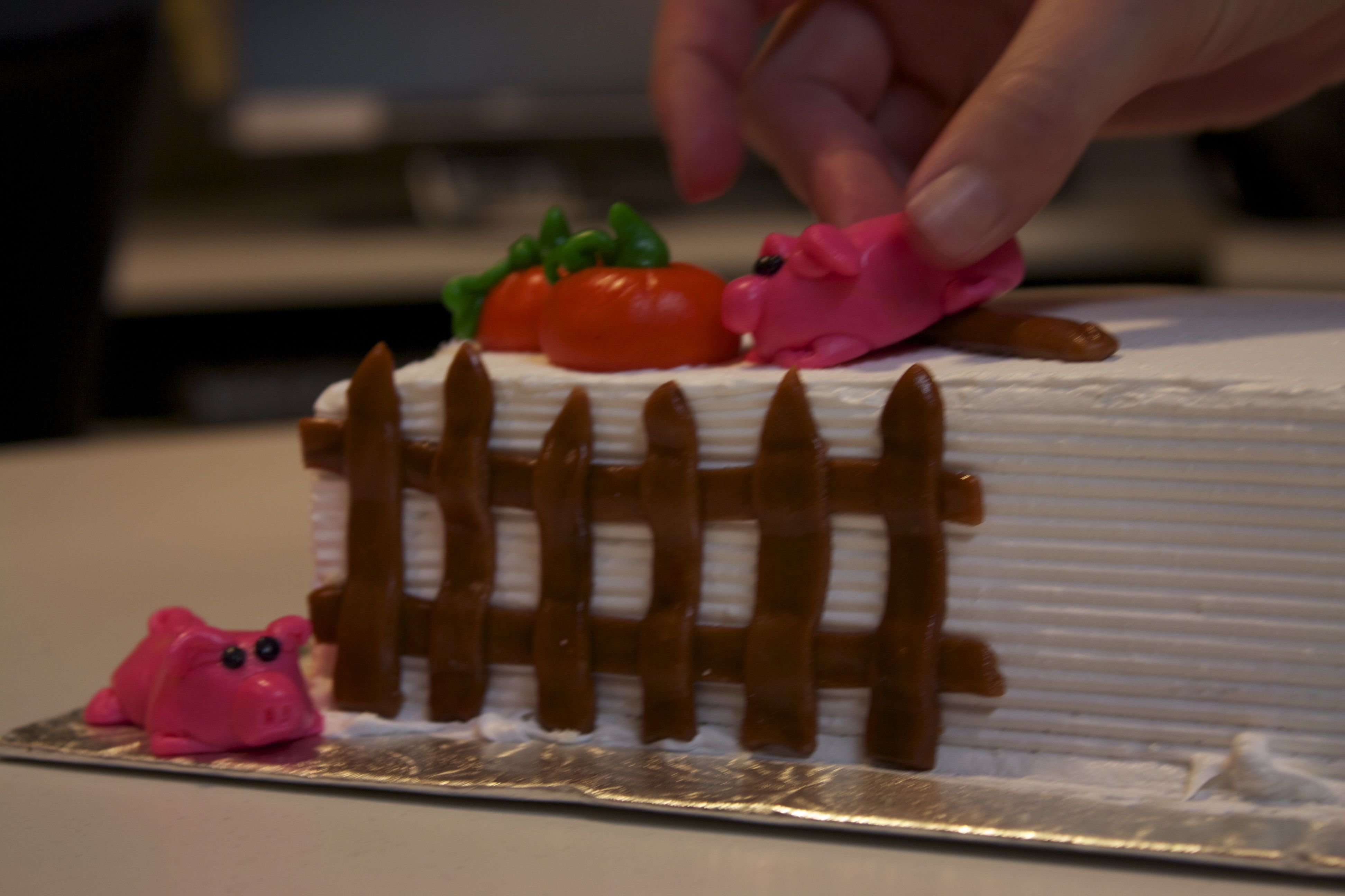 Cake Decorating Shows On Food Network : Cake Decorating for Food Network Canada Life at No. 71